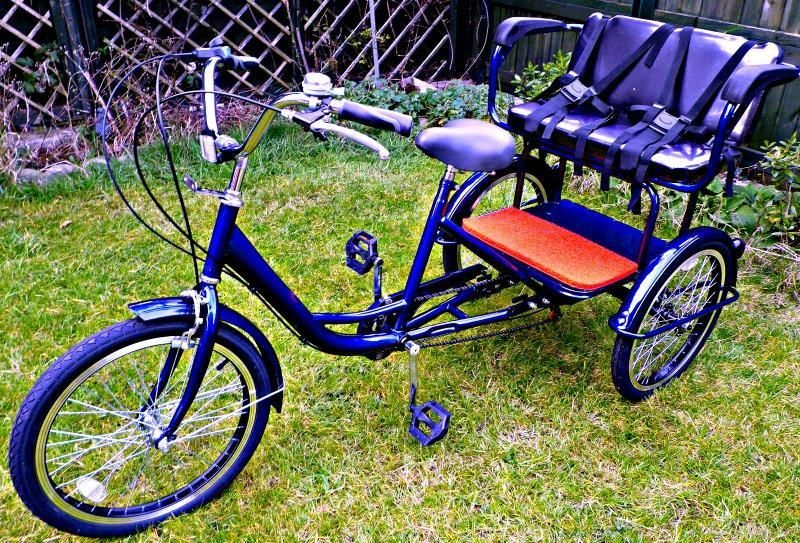 Electric Trike Not For Everybody